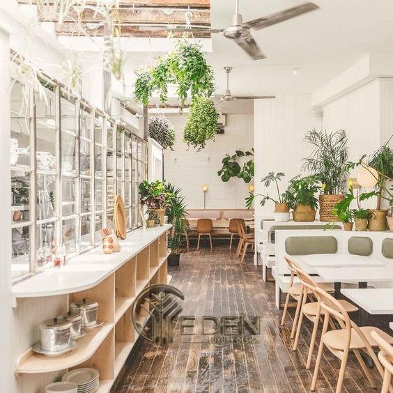 """Thiết kế quán cafe với phong cách """"Xanh"""" lấy gam màu trắng, nâu nhạt làm chủ đạo"""