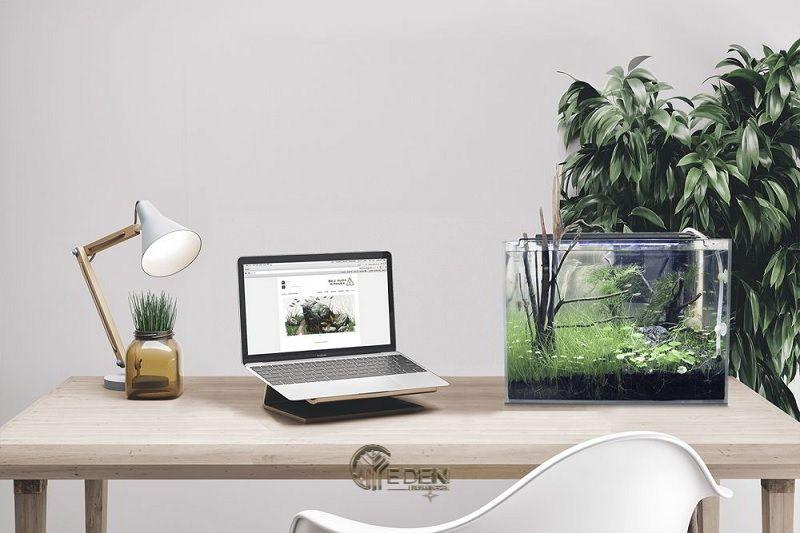 Nếu như bàn làm việc hiện đại của bạn có kết hợp kệ thì hãy sắm ngay cho mình một bể cá nhỏ nhé