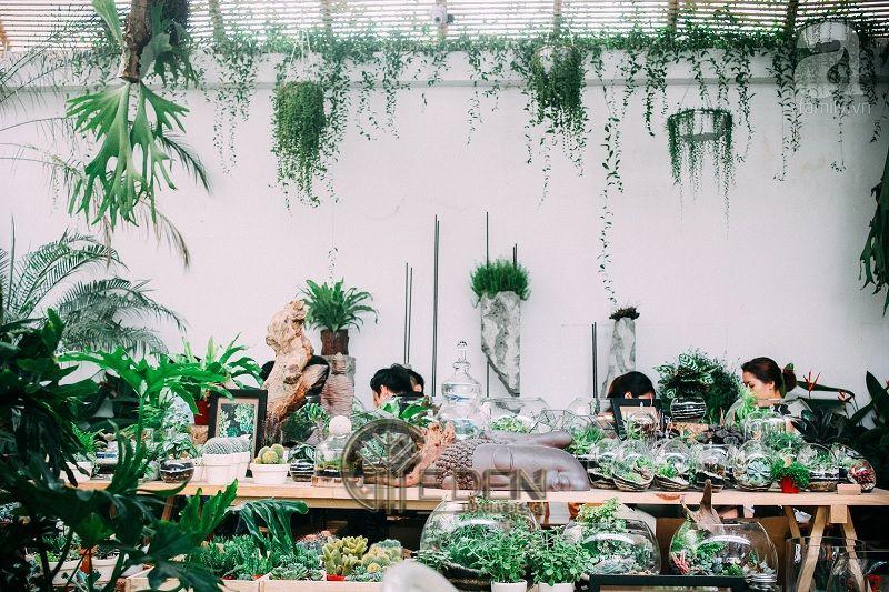 Thiết kế quán cafe cây xanh phong cách tropical