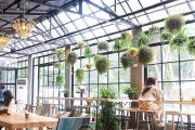 10 Mẫu thiết kế quán cafe đẹp theo mô hình kinh doanh phổ biến hiện nay