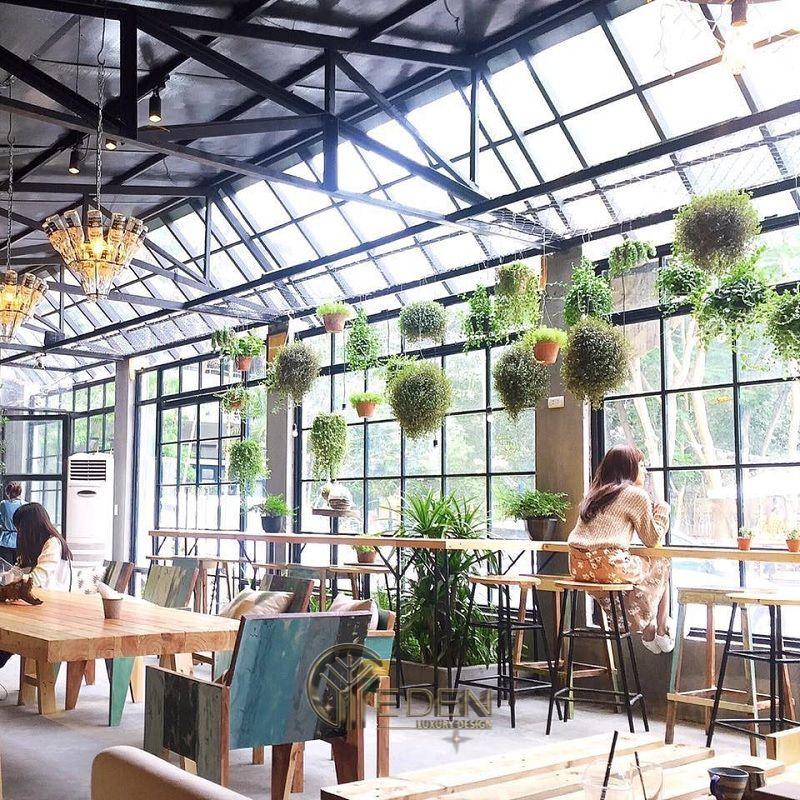 Thiết kế quán cafe cây xanh nổi bật với các khung cửa kính