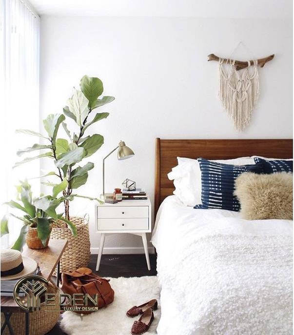 Trang trí cây xanh trong phòng ngủ