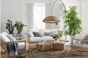Top 10+ Các mẫu cây xanh trang trí đẹp cho không gian thông thoáng và sạch sẽ
