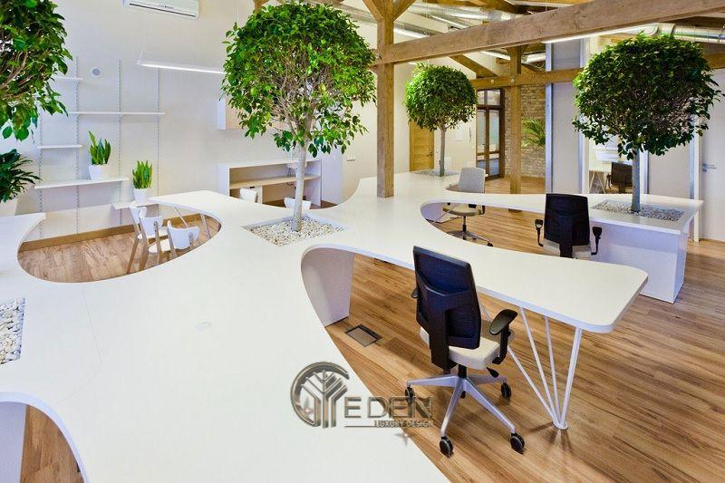 Thiết kế, thi công nội thất văn phòng Hà Nội – Phòng làm việc của nhân viên kết hợp với cây xanh tạo cảm giác thoải mái, tươi trẻ