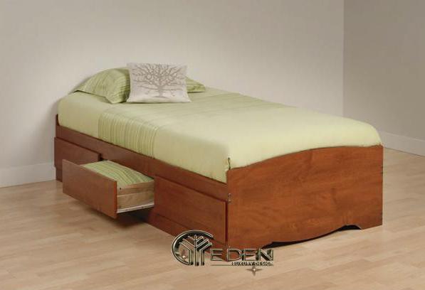 Thiết kế đơn giản, nhỏ gọn và tiện dụng của mẫu giường ngủ đơn