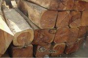 5 lưu ý quan trọng về gỗ gụ mà bạn nên biết