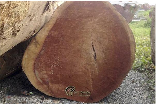 Cách nhận biết gỗ xá xị