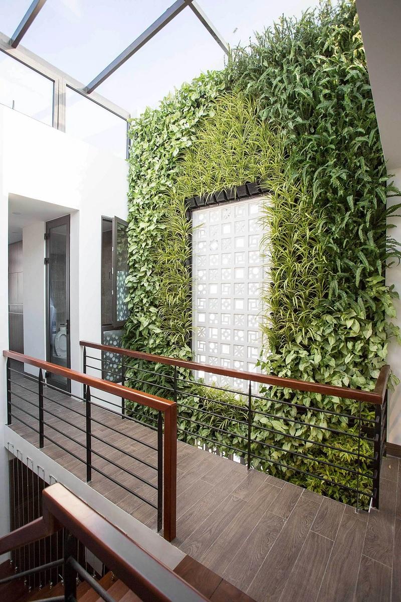 Nội thất nhà phố với thiết kế vườn cây đứng