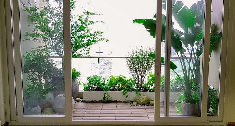 Thiết kế vườn cây nhỏ cho ban công chung cư