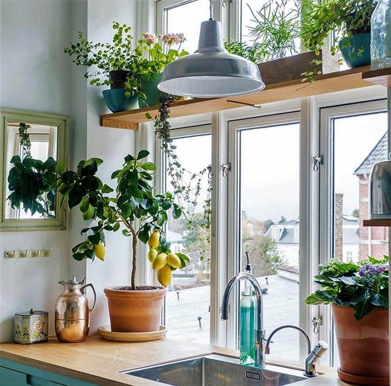 Đồng thời, nếu như gia đình sở hữu một chiếc cửa sổ để đón ánh nắng vào trong phòng thì đây quả là một điều vô cùng tuyệt vời.