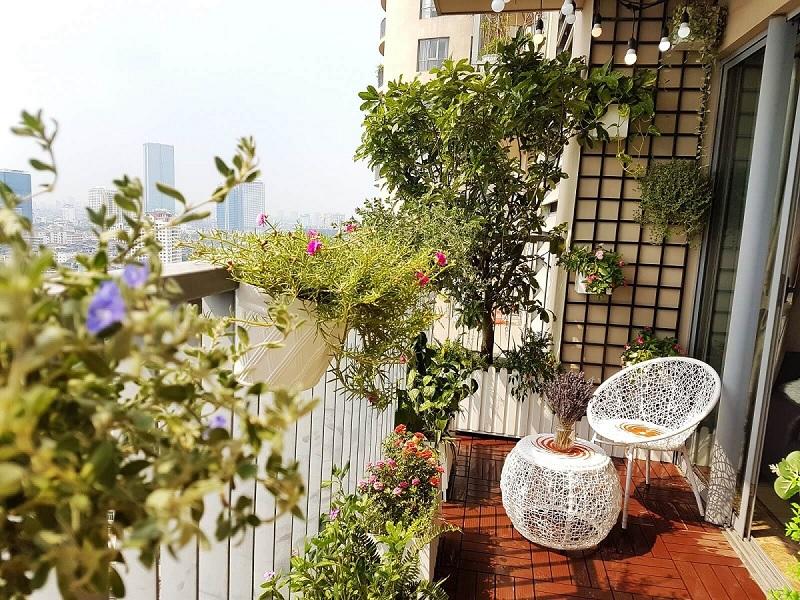 Mẫu thiết kế ban công chung cư đẹp với vườn cây mini