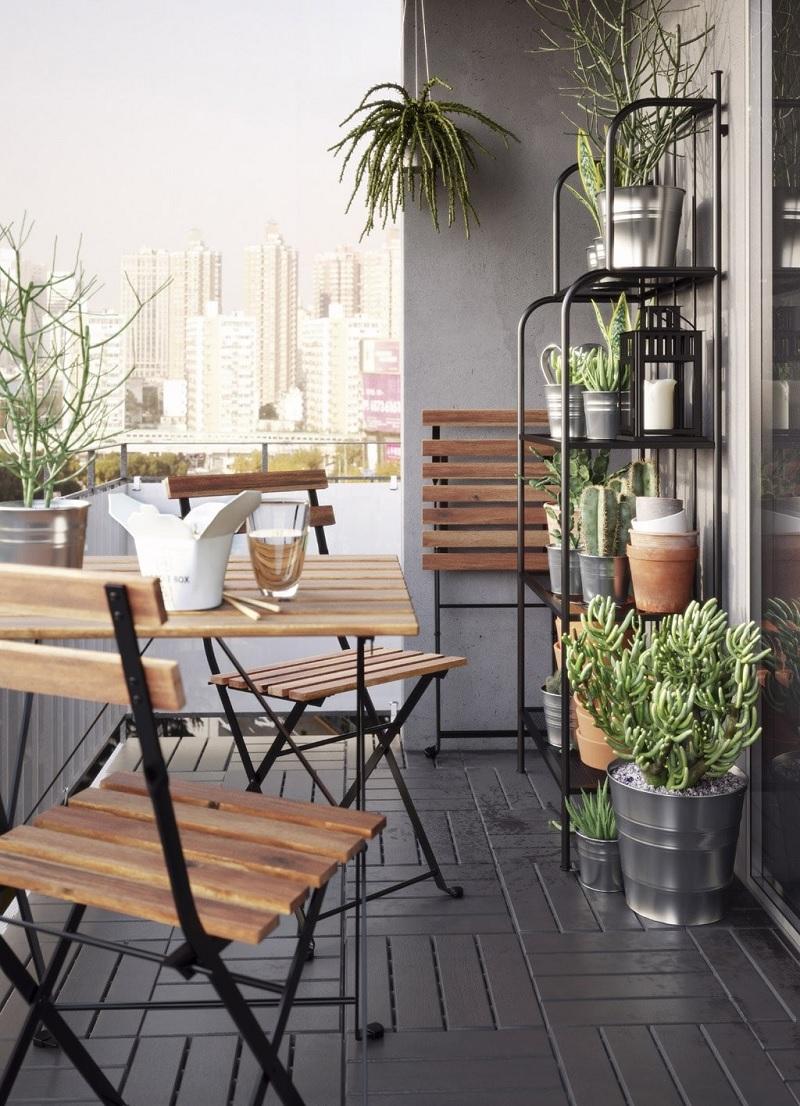 Đồng thời những loại cây có khả năng chịu hạn tốt, ưa nắng sẽ là một lựa chọn phù hợp khi decor ban công chung cư.
