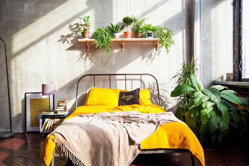Decor phòng ngủ với hoa và cây xanh